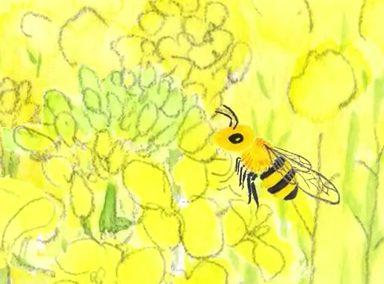 """""""Happy Bee Honey"""" タイガの「森のはちみつ」は幸せの味?"""